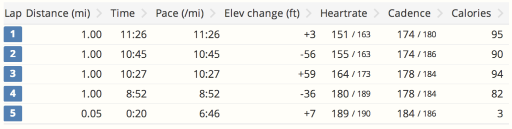 Race stats. Splits differ because of Garmin drift.