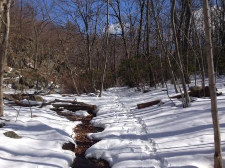 Snowy tracks at Bear Mountain
